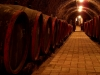 Our cellar labyrinth